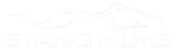 Stang Films Logo